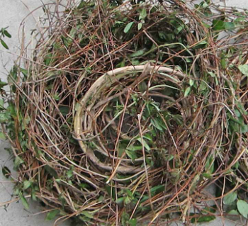 How to make a wreath honeysuckle vines